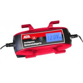 Chargeur de batterie lithium 12v 5a